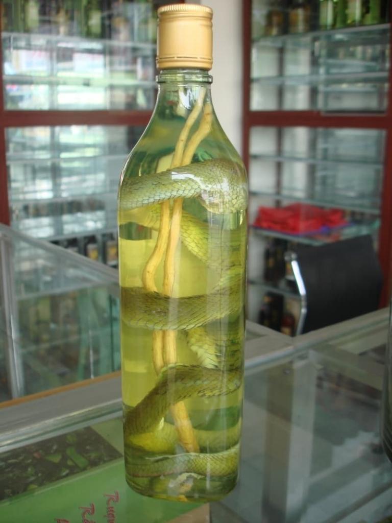 Как употреблять настойку со змеёй из вьетнама