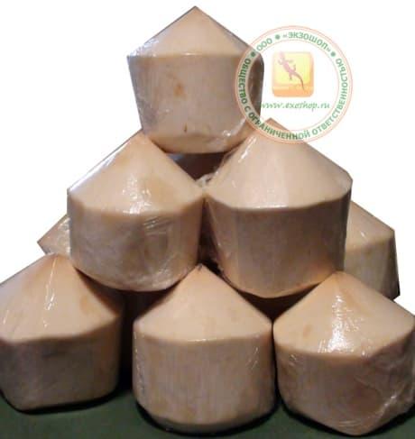Питьевой кокос купить в москве